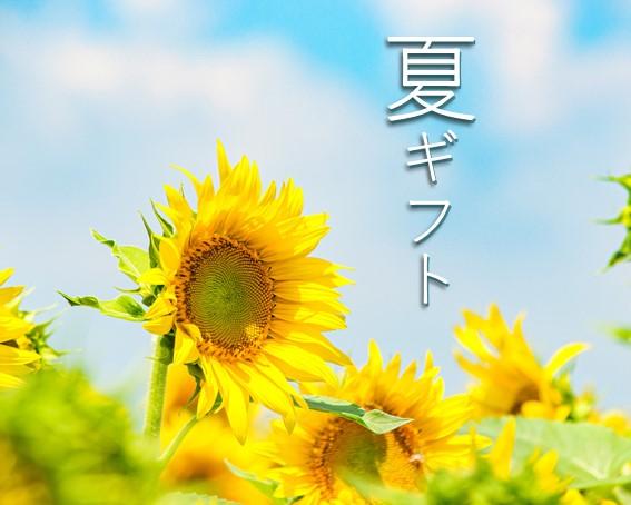 【ご愛読感謝企画】夏ギフト🍉受注開始しました!