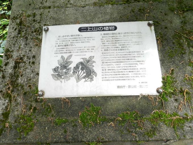 万葉植物園2017.6.10 006